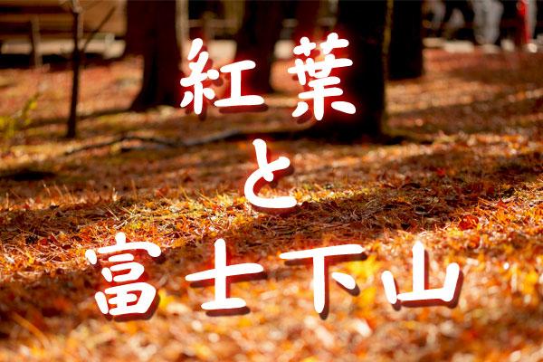紅葉と富士下山